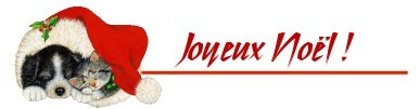JN1JOY-13.JPG
