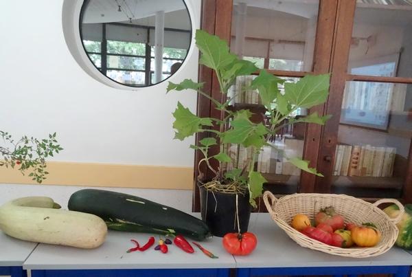 """""""Monsieur Tomate"""" a présenté la permaculture aux lycéens de la Barotte..."""