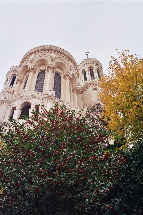 Lyon 2005