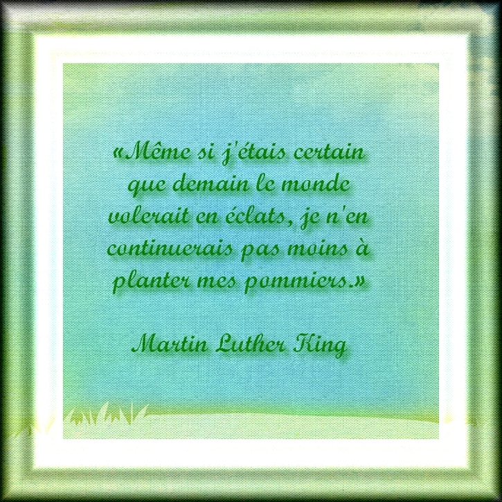 Citation:  Cultiver son jardin de Martin Luther King