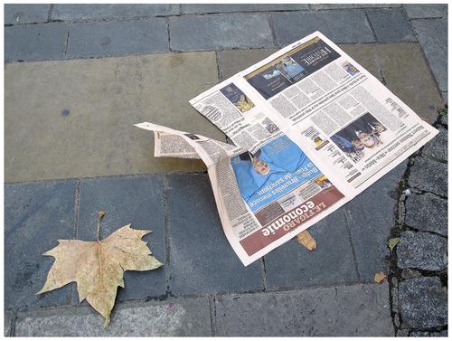 La mort des feuilles.