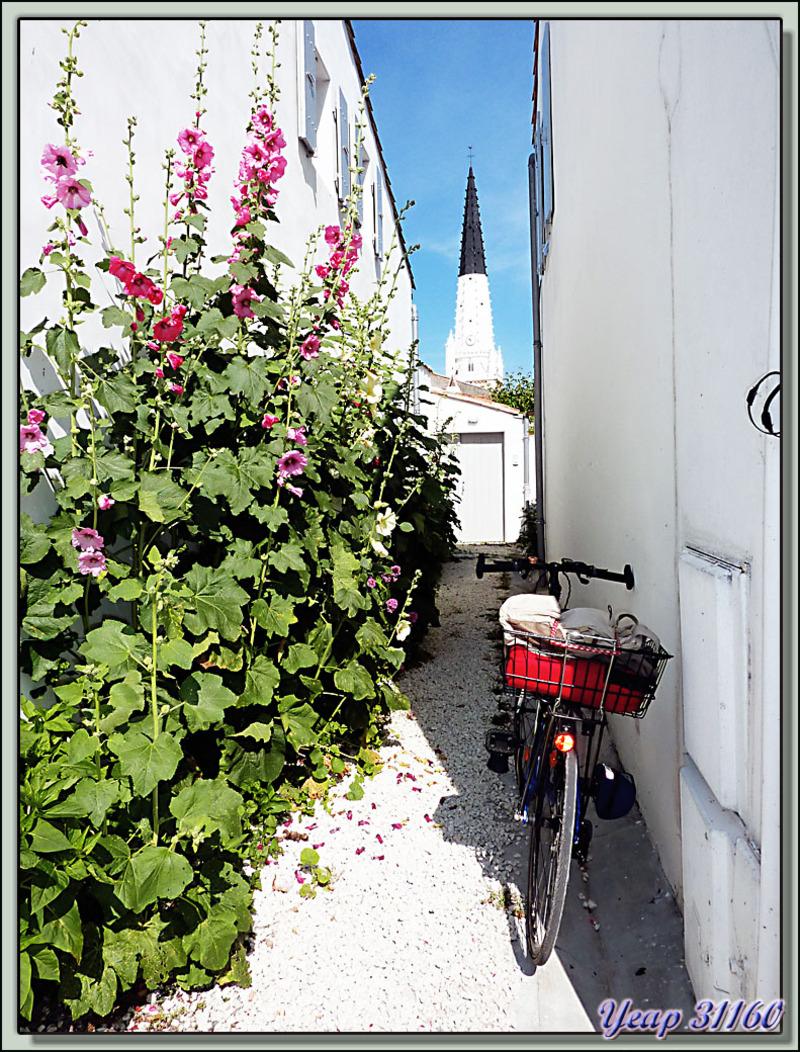 Le vélo, les roses trémières et le clocher - Ars-en-Ré - Ile de Ré - 17