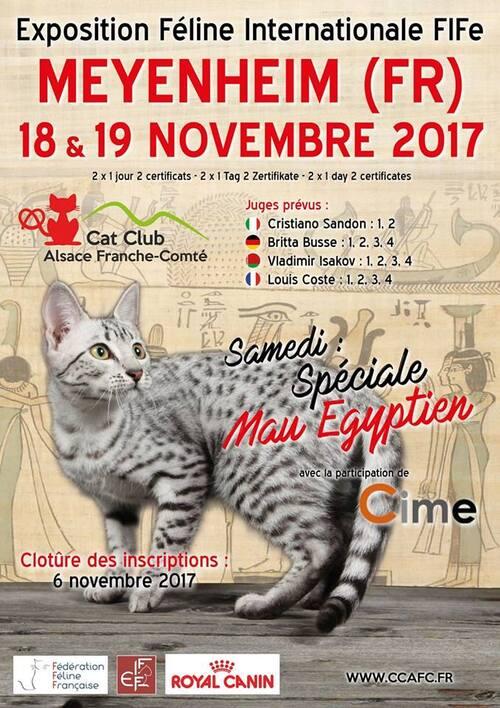 Expo de novembre :