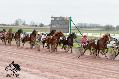 Prix Qualitrot Picardie