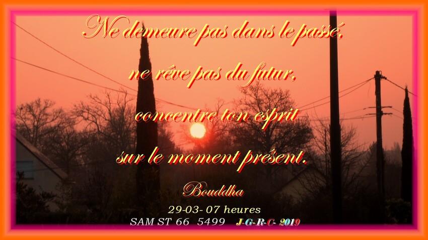 JARDIN BOTANIQUE Y-R  LA  GACILLY  4/4     D   28/03/2019