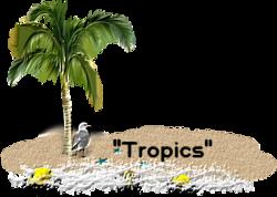Sous les tropics!