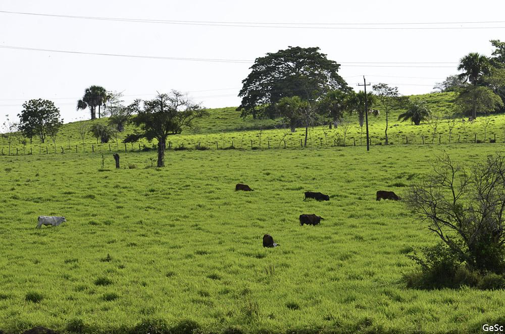 chetumal mexique yucatan