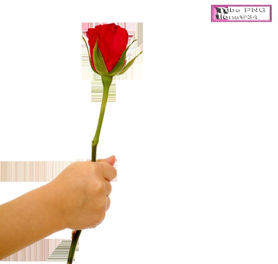 Tubes roses a la main