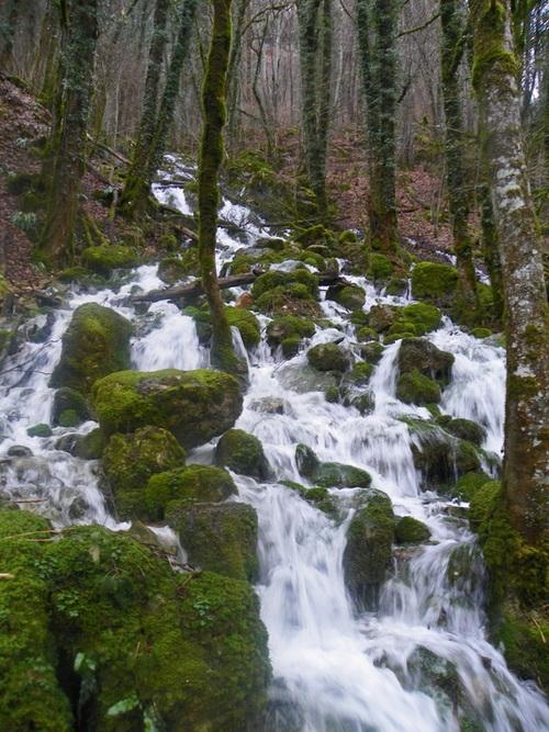 L'Albarine et la Cascade de Charabotte