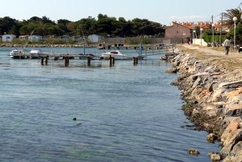 Promenade au bord du lac marin de Salses (4)