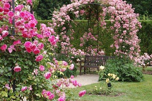 Jardin-de-Chaalis2.jpg