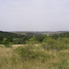 Paysage de steppe