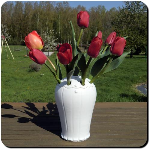 Tulipières