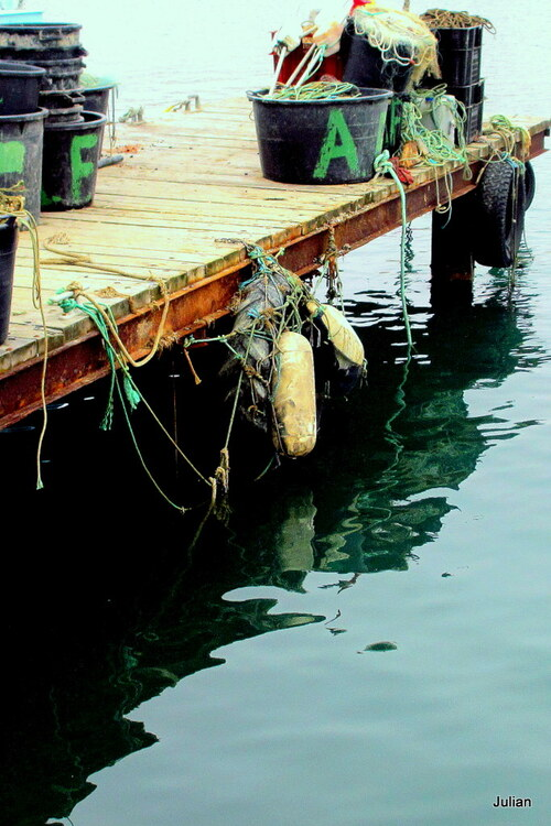 Quai des pêcheurs : le quai (3)