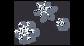 *** 428.Le charme de l'hiver ***