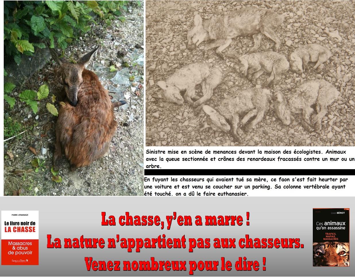 site rencontre femmes mure nancy haut du lièvre montauban