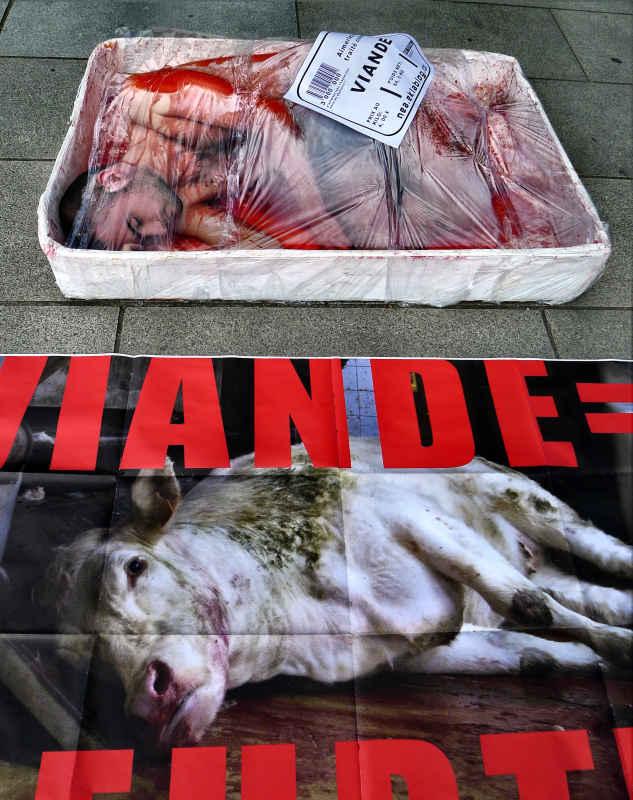 Abolition de la viande - Vannes