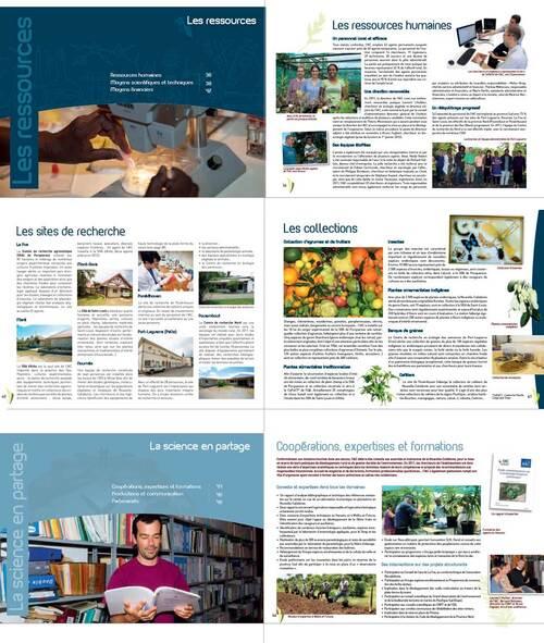 Novembre 2012 Rapport d'activité de l'IAC