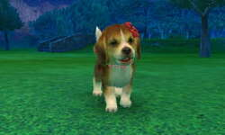 Nintendogs+Cats Golden Retriever