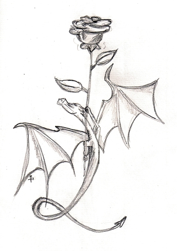 Dragon Rose -17nov07-