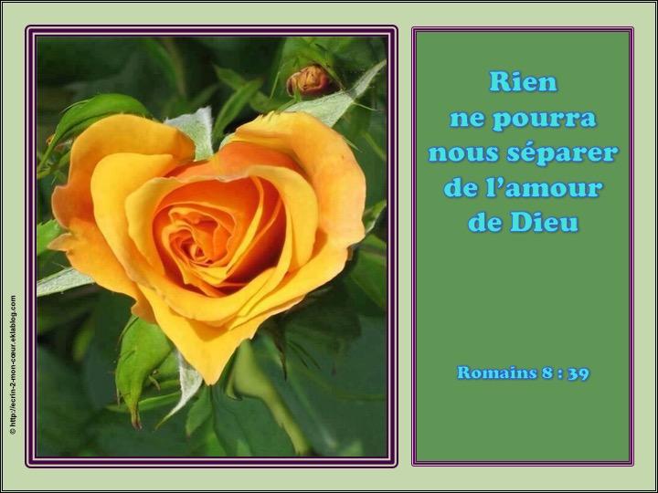 Rien ne pourra nous séparer de l'amour de Dieu - Romains 8 : 39