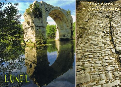 http://team.ratigan.free.fr/blogsev/postcrossing/reception/cr52.jpg