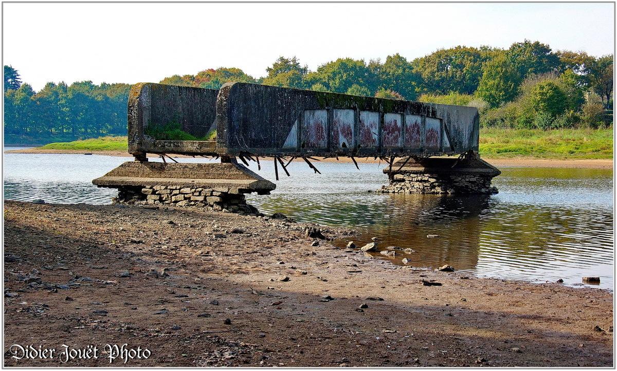 (85) Vendée - La Ferrière (2) - Pont des Boches