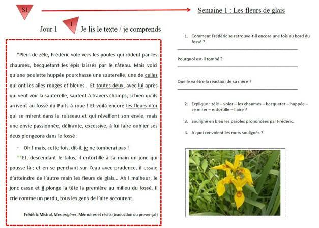 """Diaporamas Picot """"la grammaire au jour le jour"""" la suite : période 5"""