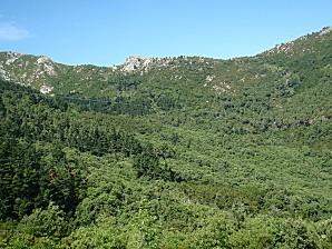 la cote toscane et l'ile d'elbe 072