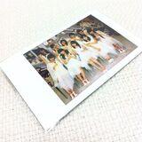 Ayumi Ishida Morning Musume Ameba 2013 Croix Rouge