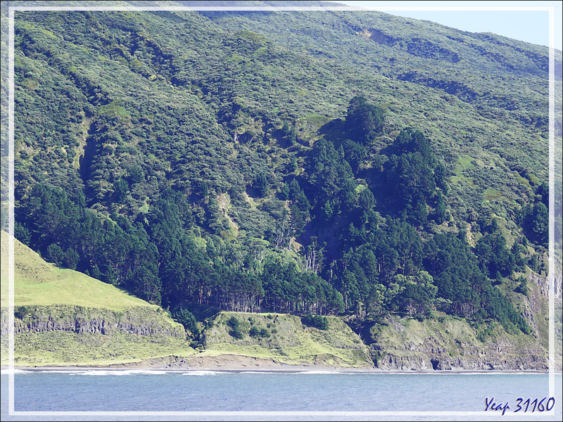Sandy Point - Tristan da Cunha