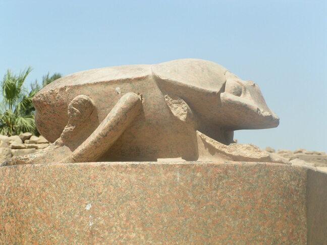 EGYPTE 246