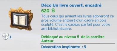 """Carrière """"Auteur"""" niv 5"""