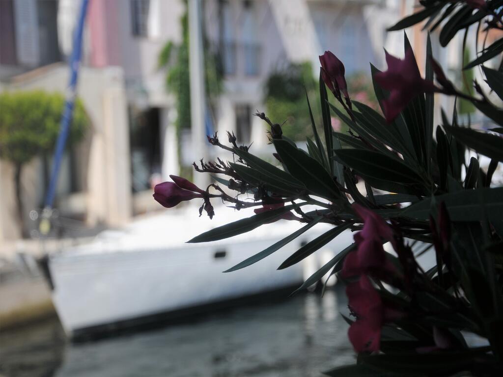 Port Griùaud (4)...A suivre