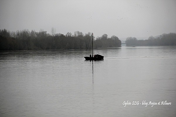 Loire-en-Hiver 0681a