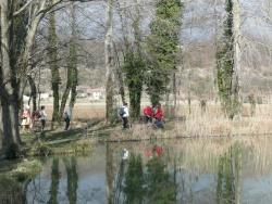 20 03 2012    De l'etang de Chaleyre au bois des Ussiaux . . .