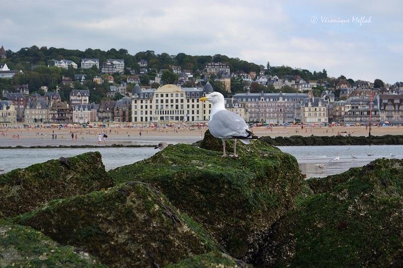 Deauville : la Touques sépare Deauville de Trouville.
