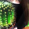 15 icones cactus