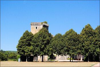 Parc et vieux château de Roquetaillade (Gironde)