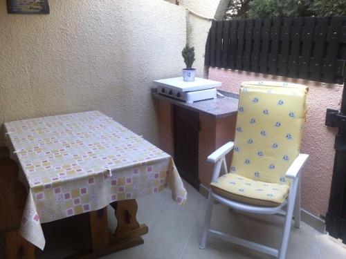 Chiots bichons maltais