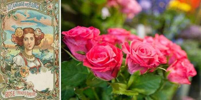 St Valentin - Le langage des fleurs