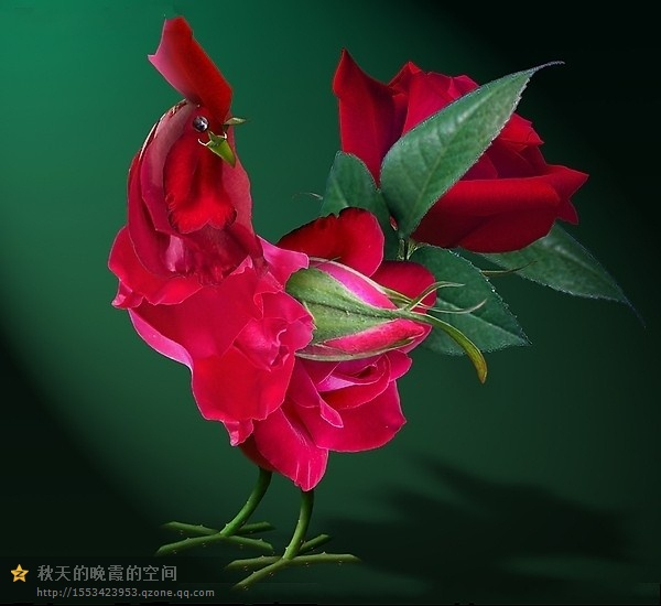 """Belles créations ...  sculptures """"coqs en fleurs"""" d'un producteur très talentueux !"""