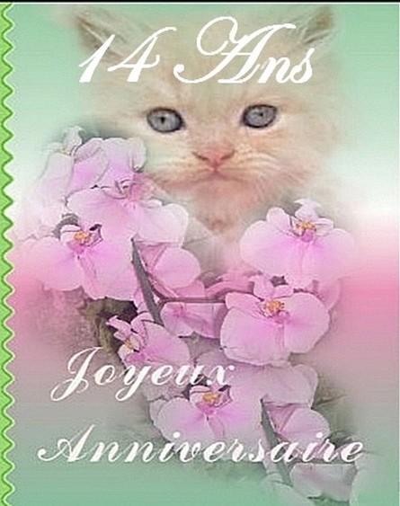 Joyeux Anniversaire Corinne62