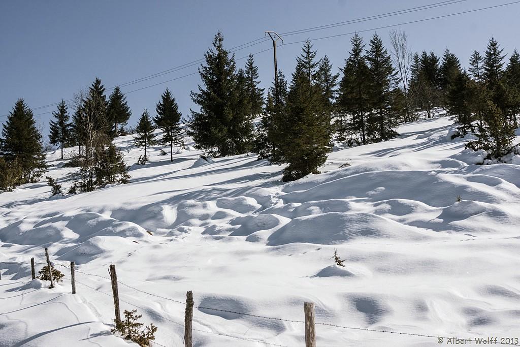 Dernières  neiges - 2