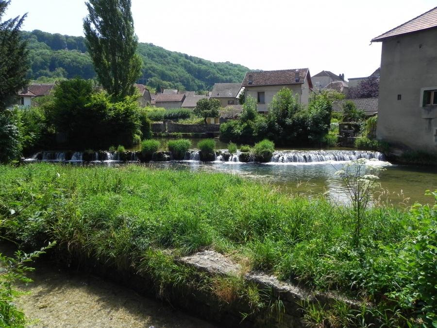 Arbois dans le Jura