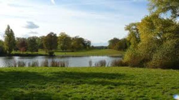 * Hyde Park