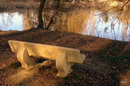 Le banc au bord de l'eau