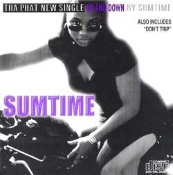 SUMTIME - UP AND DOWN (CDM 1998)