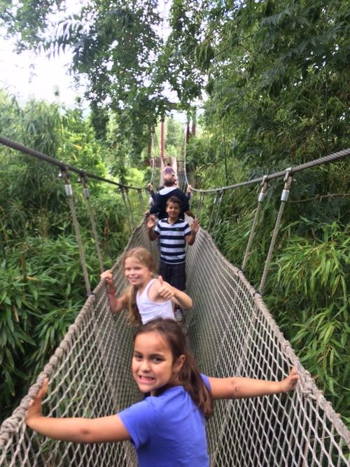 """Plus beau   parc zoologique  """"Domaine de Cambron"""" unique en """" Belgique """"Nous y retournerons très prochainement ."""