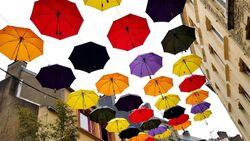 Les parapluies de Cleebourg 5.